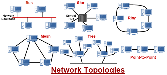 network-topology.png